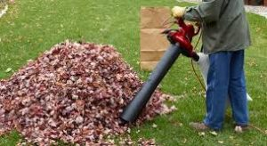 Leaf Mulcher: Advantages & Disadvantages