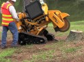 Best Stump Grinder Reviews 2018 (Top Picks)